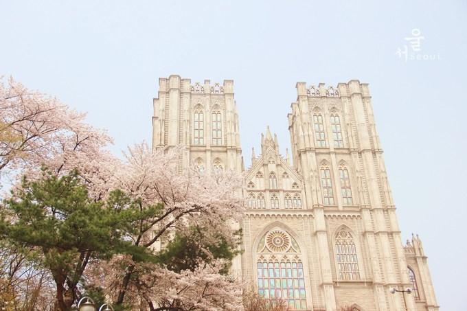 韩国旅游攻略图片4
