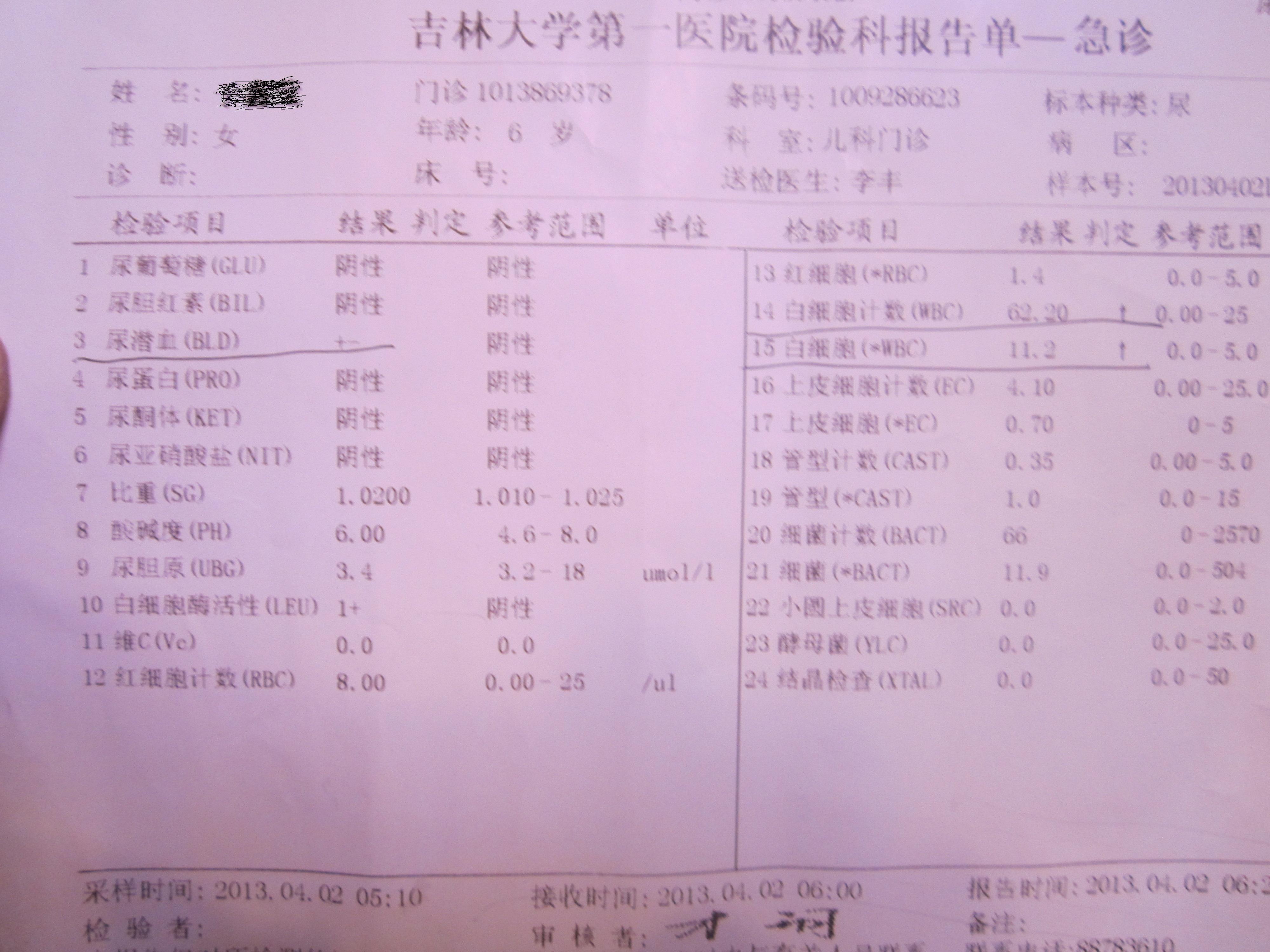 肌酐偏高尿常规正常_女孩子今年六岁,尿常规里白细胞高出正常值的二倍多,医生 ...