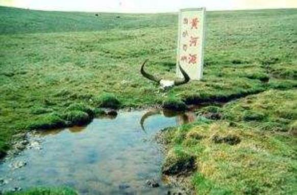 黄河的源头阅读题