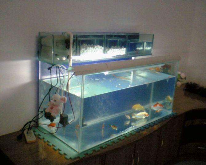 鱼缸 自制上滤