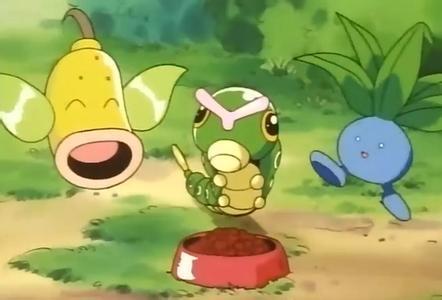 口袋怪兽绿宝石妙蛙种子,大方性格好不好