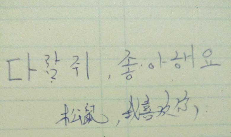"""撒浪嘿呦是什么意思_""""我喜欢你""""用韩文怎么写?发音用中文拼音是什么?谢-喜欢你 ..."""