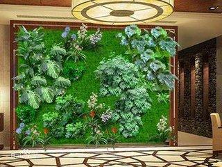 中国植物墙网浅谈仿真植物墙的清洁、护理保养知识