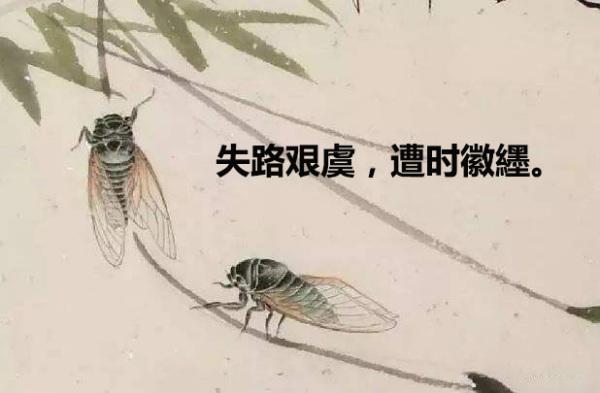 骆宾王的 狱中咏蝉 中 失路艰虞,遭时徽纆 是什么意思