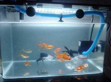 森森鱼缸_森森鱼缸防爆变频加热棒自动恒温养鱼水族箱加热