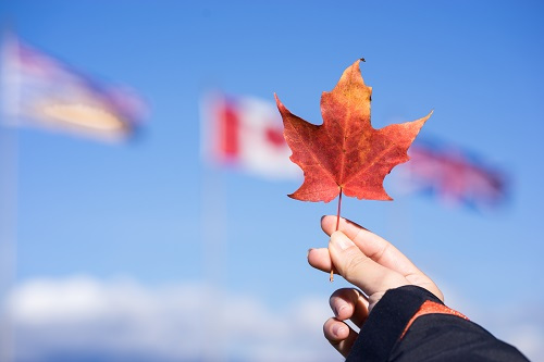 毕业5年了,想去加拿大工作可以移民吗?