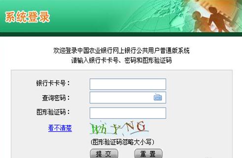 农业银行卡没开通网银可以在网上查流水明细吗?