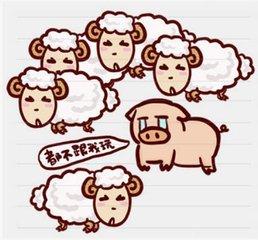 地图上一只羊是什么成语