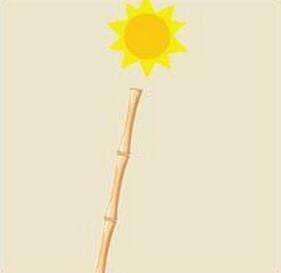 太阳一个梨猜成语_一个太阳