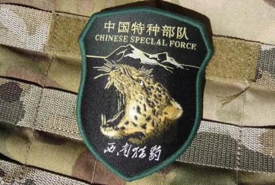 中国有哪些特种部队臂章图片