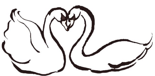 怎么画天鹅的简笔画最漂亮