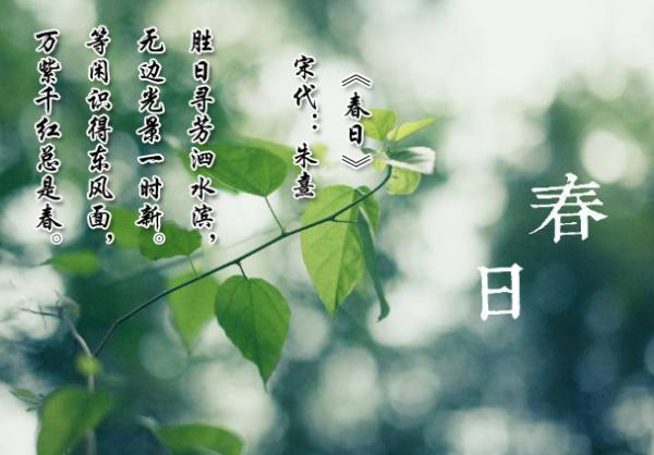 春天少年游诗词 描写春天56字的古诗词