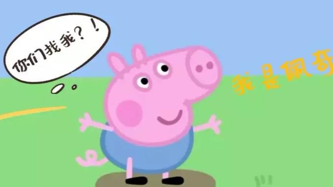 """从野猪到家猪,""""佩奇""""你到底经历了什么?的头图"""
