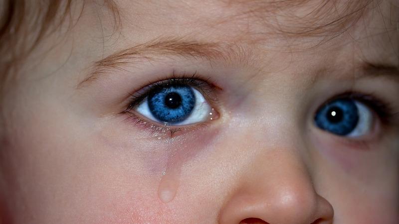 一离开人就哭,孩子是真粘人还是假害怕?
