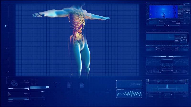 器官移植的病人能否使用PD-1类免疫药物?