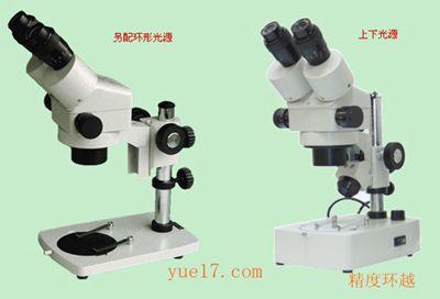 几种显微镜的简单原理_显微镜的结构图