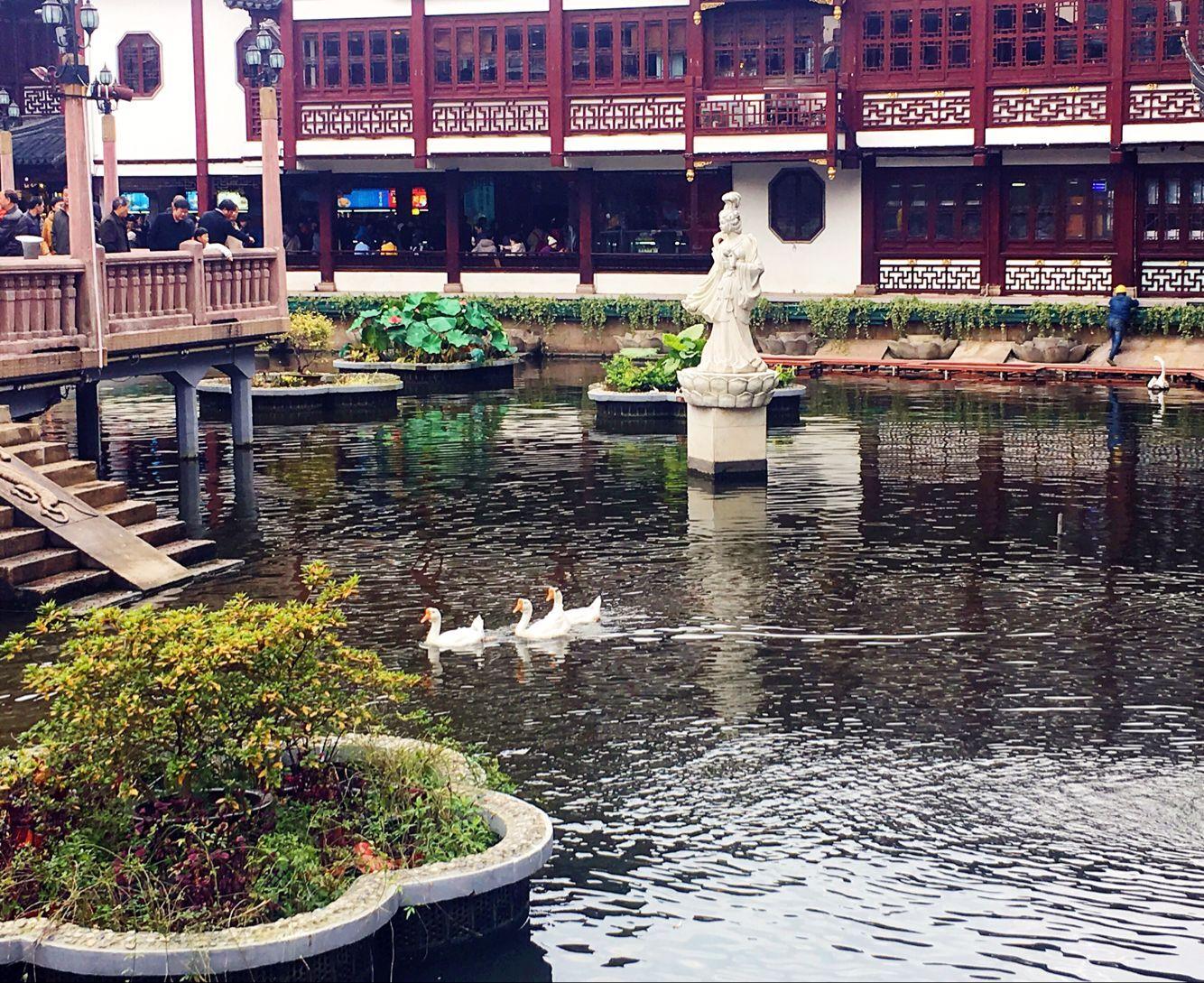 上海旅游攻略图片11