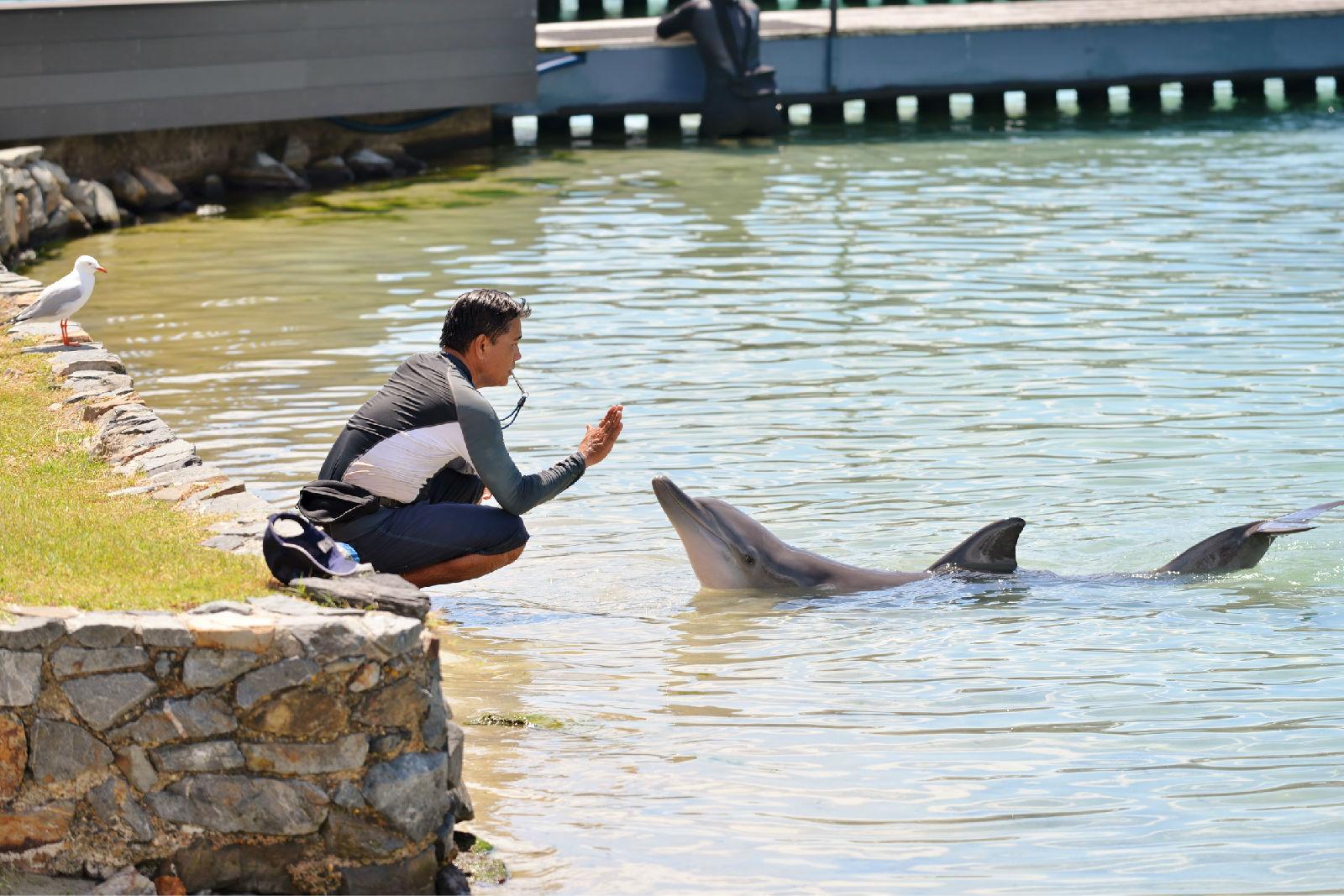 澳大利亚旅游攻略图片73
