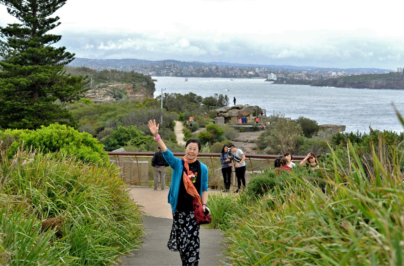澳大利亚旅游攻略图片368