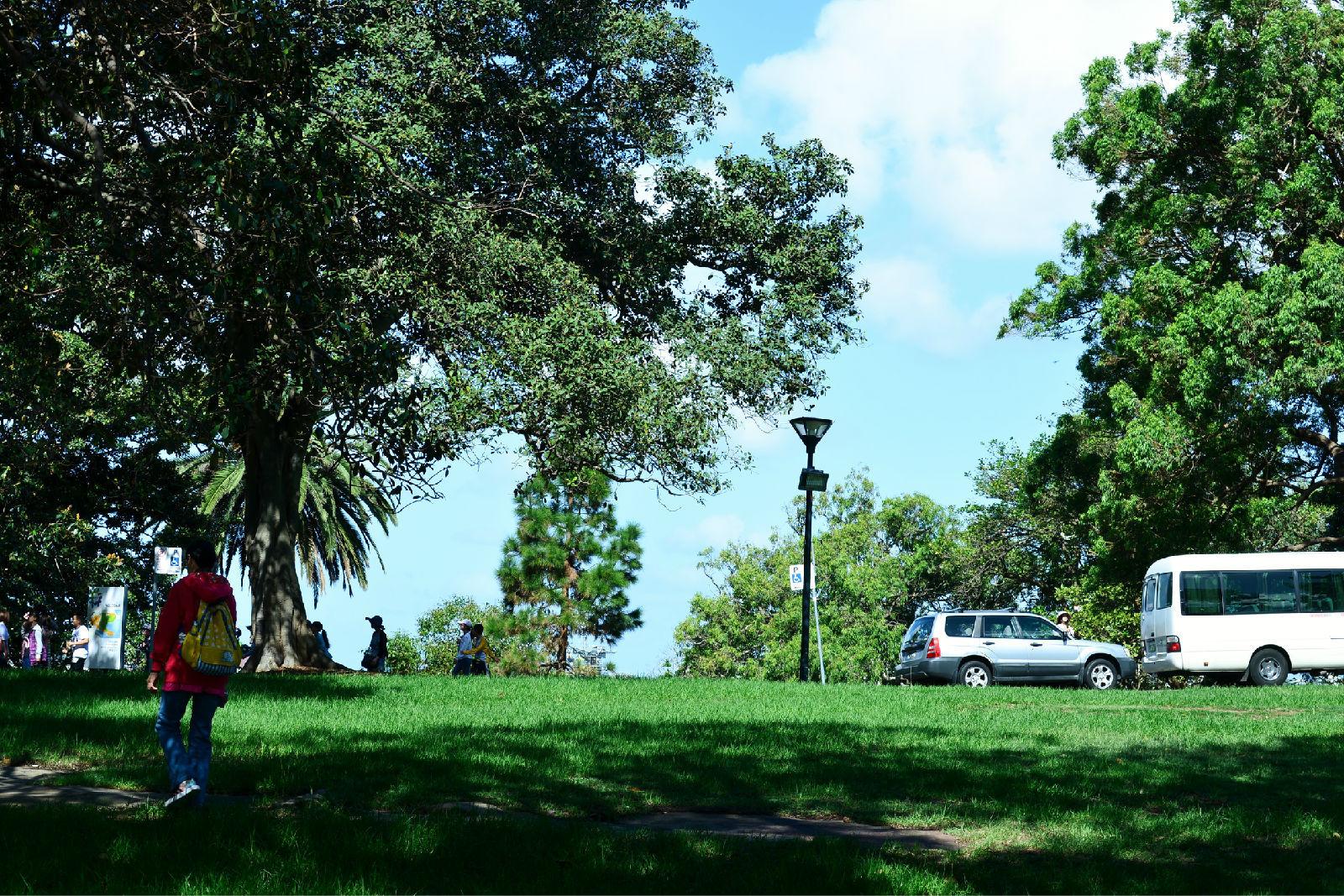澳大利亚旅游攻略图片493