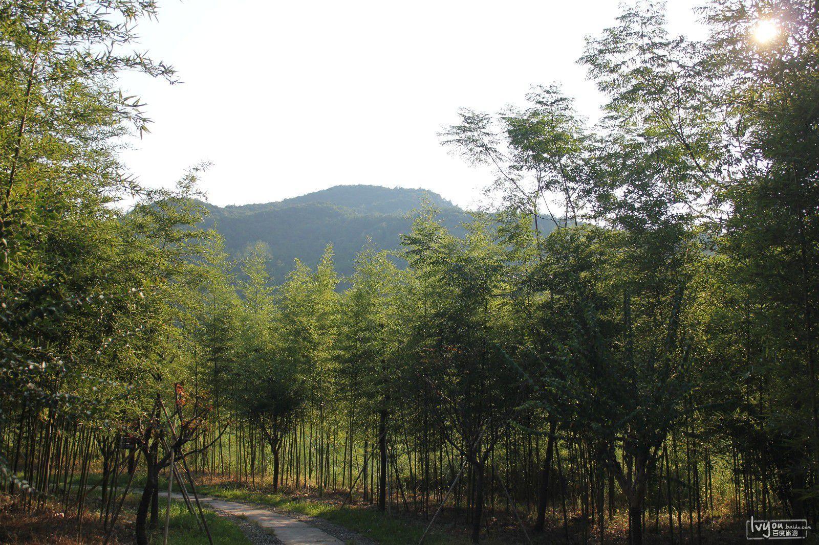 桐庐浪石金滩旅游攻略图片4