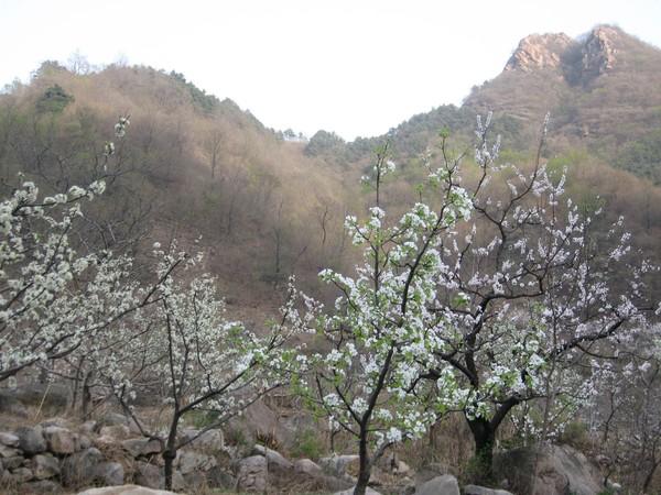 天津蓟县旅游攻略图片31