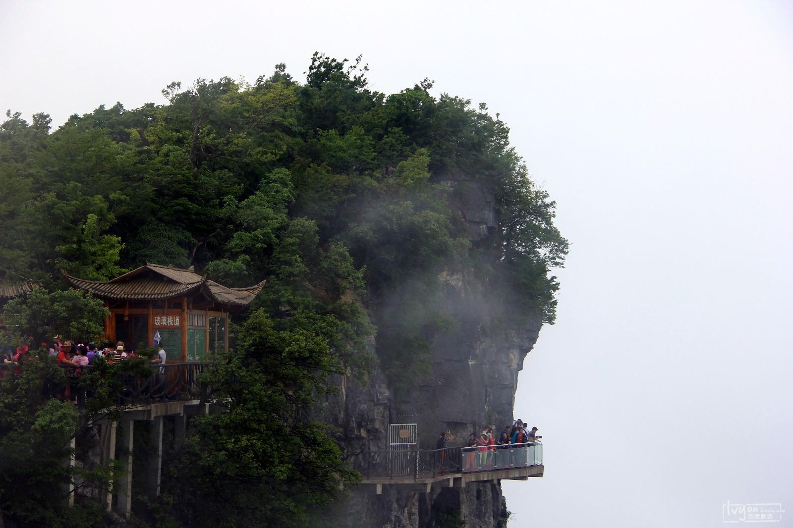 张家界国家森林公园旅游攻略图片56