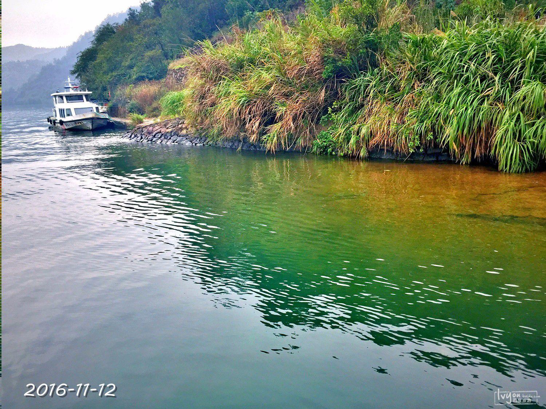 衢州旅游攻略图片100