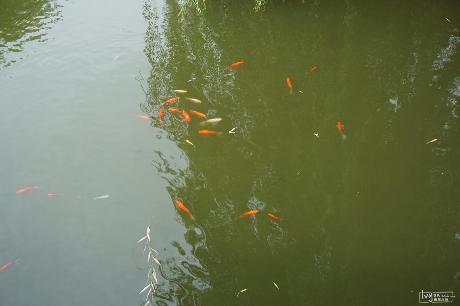 京娘湖<a href=http://www.huaxiacaixun.com/Trave/ target=_blank class=infotextkey>旅游</a>攻略图片7
