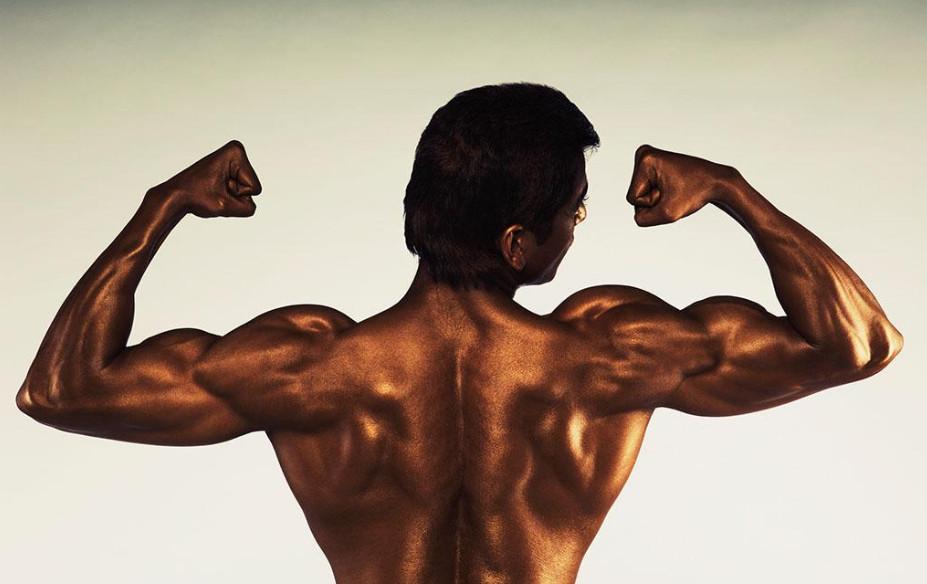 肌肉由什么组成_肌肉当中的CP和ATP是什么?_百度知道