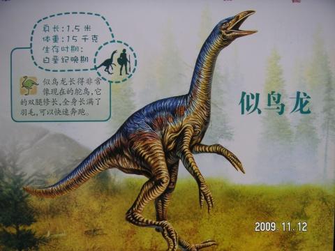 恐龙的资料50字_关干恐龙的图片和资料_百度知道