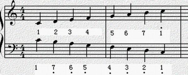 求个电子书你们懂2015_请问怎么识五线谱,简谱啊?本人纯新手,想学电子琴,什么也 ...