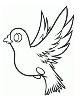 国庆手抄报鸽子怎么画