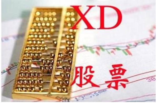 【股票xd开头是什么意思】股票xd开头是什么意思