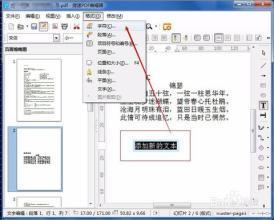 显示器字体模糊_PDF文档的字体模糊怎么办?如何能让字体变清晰?_百度知道
