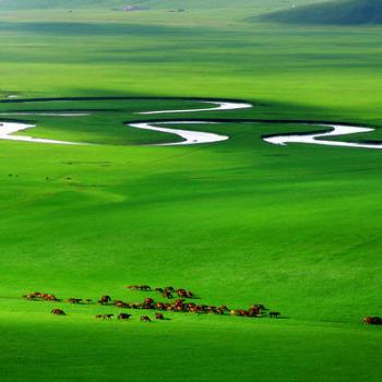 开鲁县_内蒙古四大草原都是哪些?_百度知道