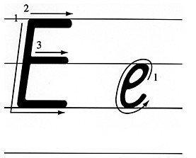 E的正确笔顺怎么写