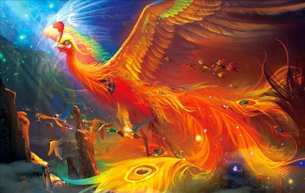 有没有一些唯美梦幻的凤凰图片?