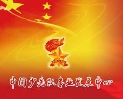 中国少先队事业发展中心考级国家认可吗?