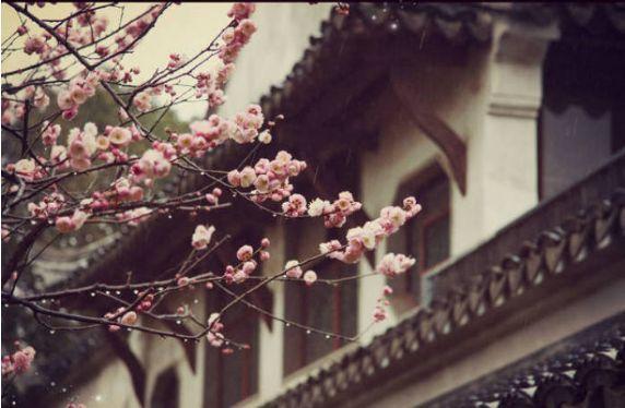 """舒同书法_""""坐看庭前花开花落,笑看天边云卷云舒""""的出处._百度知道"""