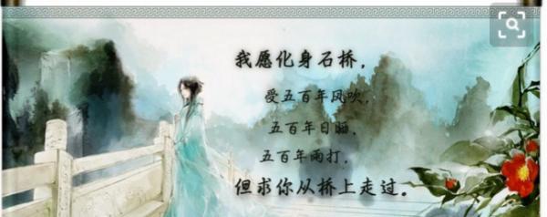 """""""我愿化身石桥,受五百年风吹雨打之苦"""",是哪首诗里面的句子?"""