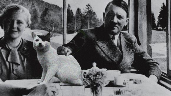 独裁者的餐桌为什么总是与众不同?