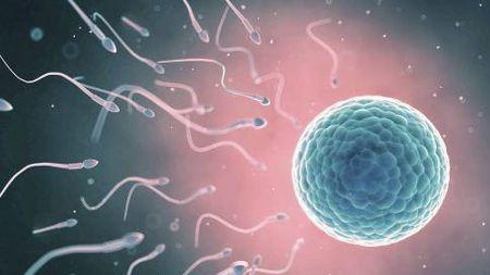 一女子怀孕期间竟再度有孕!这些知识一定要学!的头图