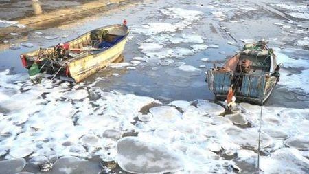 冷到大海都冻上了!海冰什么样见过吗?
