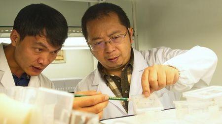 世界首例非哺乳动物可哺乳,中国科学家发现蜘蛛乳汁震动科学界!的头图
