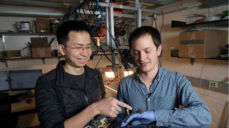 中国青年科学家研究蟑螂步态,开发出多足机器人步态以及运动模型