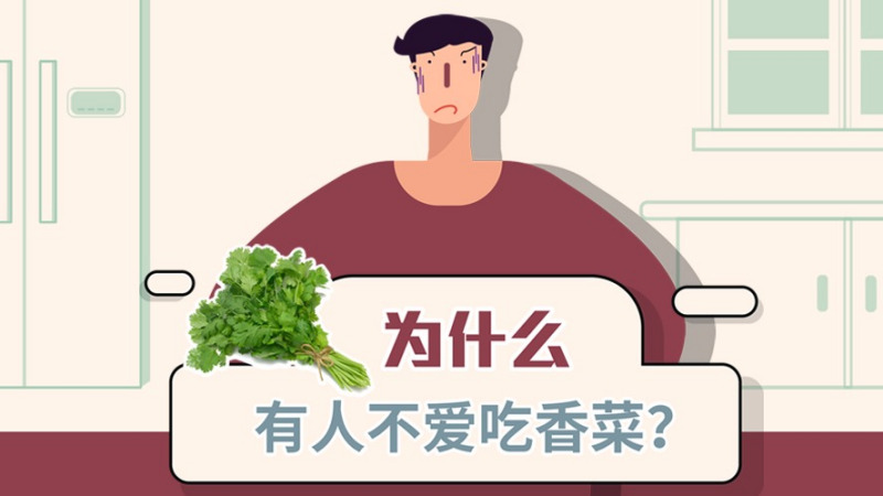 为什么有的人不吃香菜?为什么有人喜欢香菜,有人却觉得很恶心?