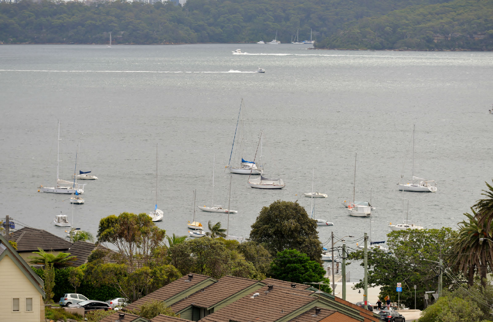 澳大利亚旅游攻略图片359
