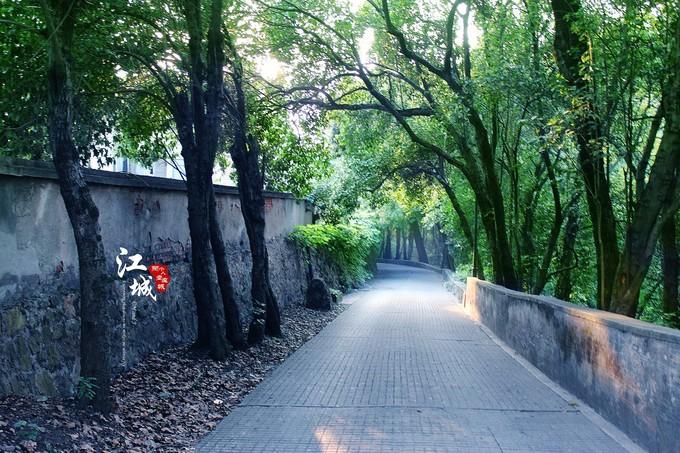 武汉旅游攻略图片169