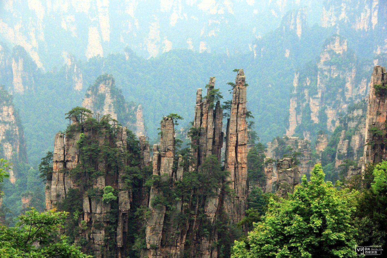 张家界国家森林公园旅游攻略图片13